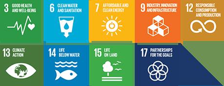 Contribution to the SDGs