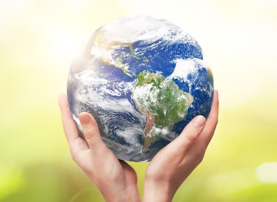 Always Thinking of Sustainability