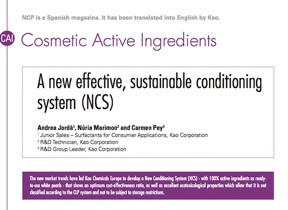 A new effective, sustainable conditioning system (NCS)